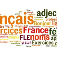 Les 50 verbes les plus utilisés dans la langue française