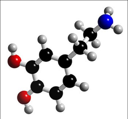 """Résultat de recherche d'images pour """"molécule dopamine"""""""