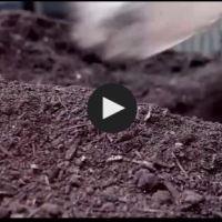 Italie : le recyclage des déchets organiques